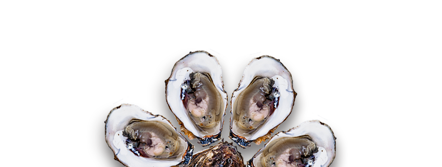 slider_oysters.png